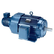 Leeson Motors - 125HP, 460V, 1785RPM, TEBC, Rigid Mount, 1.0 S.F.