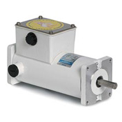 Leeson Motors Washdown DC Motor-1/6HP, 90V, 1750RPM, IP55, Sq. flange