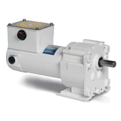 Leeson Motors Gearmotor-Parallel Shaft, 31RPM, 1/8HP, TENV, 12V, DC, 220 Lb.In.