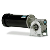 Leeson Motors Gearmotor-Right-Angle Shaft, 45RPM, 1/8HP, TENV, 90V, DC