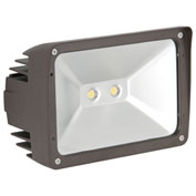 Luminance F7394-66 LED Outdoor Flood Light, 2200 lumens, 4000K, IP65 Rated, Threaded Knuckle Mount
