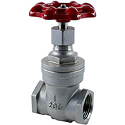 1 In. Stainless Steel Gate Valve - 200 PSI