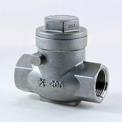 1/4 In. 316 Stainless Steel Swing Check Valve - 200 PSI