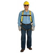 Workman Harnesses, MSA 10072486