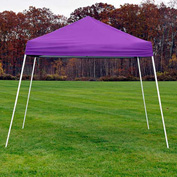 ShelterLogic 22702 Pop-up Canopy-Sports Series, Slant Leg, 10 x 10, Purple