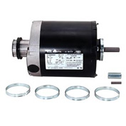 Century ARB2036S, Split Phase Resilient Base Motor 115/208-230 Volts 1140 RPM 1/3 HP