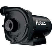Flotec Cast Iron Centrifugal Pump 2 HP