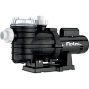 Flotec  Two-Speed In-Ground Pool Pump, 1 HP
