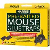 Harris Mouse Glue Trap 2 Pack HMG-2 - Pkg Qty 24