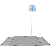 Health O Meter 2700KL Digital Wheelchair Dual Ramp Scale 1000 x 0.2lb XL Platform, Remote Display