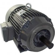 US Motors, TEFC, 20 HP, 3-Phase Motor, H20P2DC