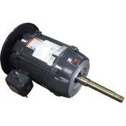 US Motors Pump, 10 HP, 3-Phase, 3500 RPM Motor, FF10S1XV