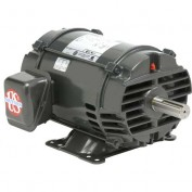 US Motors Pump, 20 HP, 3-Phase, 1770 RPM Motor, FF20E2A