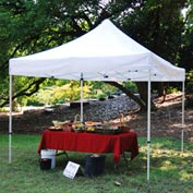Festival™ Instant Canopy 20'L x 10'W - White