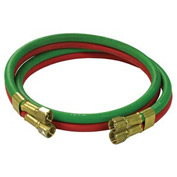 Reelcraft S601031-6 1/4 dual x 6, 200 psi, Twin Welding T-Grade Inlet Hose Assembly