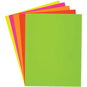 "Roaring Spring Poster Board, 22"" x 28"", Assorted Fluorescent, 25/Pack"