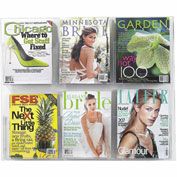 See-Thru 6 Magazine Display