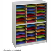 36 Compartment Economy Literature Organizer - Gray