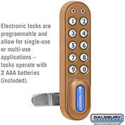 Salsbury Electronic Lock 11190 - for Solid Oak Executive Wood Locker Door, Gold