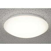 "Superior Lighting FM14254120W LED Flush Mount Ceiling Light Fixture,14""Round, 25W, 1800 Lumen, White"
