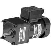 AC 200V, 50/60Hz Terminal Box T1, Induction Motor, Three Phase - 25W
