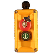 T.E.R., F71FY11000000002 VICTOR Wall Mount Control Station, Yellow, 2 Hole, Key Stop + Start
