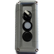 T.E.R., F71GG00020001001 VICTOR Wall Mnt. Control Station, Gray, 3 Hole, 2 Pos. Selector+2 Funct.