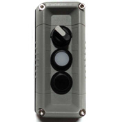 T.E.R., F71GG00020001002 VICTOR Wall Mnt. Control Station, Gray, 3 Hole, 3 Pos. Selector+2 Funct.