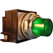 Springer Controls N7PLSVR00-120,30mm Illum. Push-Button,Extended,Momentary,120V,No Contacts,Green