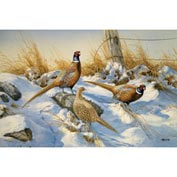 Wildlife Mat - Pheasants 4' x 6'