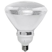 TCP 2P3819 19 Watt Par38 Flood- CFL Bulb