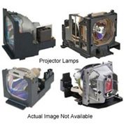 Original Manufacturer Infocus Projector Lamp:X15