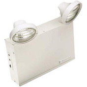 Emergi-Lite 12LSM36-2 Large Steel Emergency Light - 12V 36W
