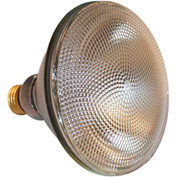 Times Square Lighting Q250PAR38/SP, PAR38 Lamp, Spot, 250W