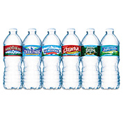 Nestle Premium Spring Bottled Water, 16.91 Oz., 1872/Pallet