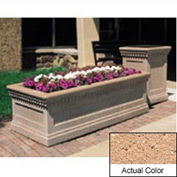 Wausau TF4238 Rectangular Outdoor Planter - Weatherstone Cream 72x36x24