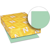 "Neenah Paper Exact Index Card Stock 49561, 110 lbs, 8-1/2"" x 11"", Green, 250/Pack"