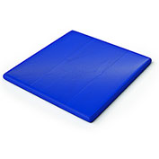 Whitney Brothers Floor Mat Cushion for Toddler Play House Cube - Royal Blue