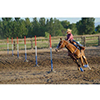 Barrel Racing and Arena Equipment