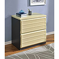 Benjamin 2-Drawer Lateral File Cabinet Natural and Gray