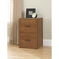 Ameriwood 2-Drawer Vertical File Cabinet in Bank Alder