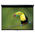 "HamiltonBuhl Manual Pull Down Projector Screen - 120"" Diagonal - Video Format - Black Frame"