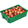 "LEWISBins Stack-N-Nest Agricultural Container AF2013-6, 19-11/16""L x 13-1/8""W x 5-5/8""H, Green - Pkg Qty 10"