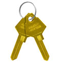 Salsbury Key Blanks 22229 for Key Padlocks of Extra Wide Designer Lockers - Box of (50) Gold