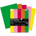 "Colored Paper - Neenah Astrobrights 21224-  8-1/2"" x 11"" - 24 lb - Vintage Colors - 500 Sheets/Ream"