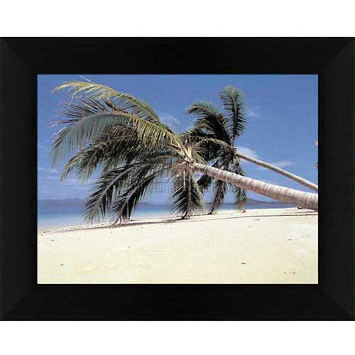 """Crystal Art Gallery Palm Trees 24""""W x 20""""H, Straight Fit Framed by"""