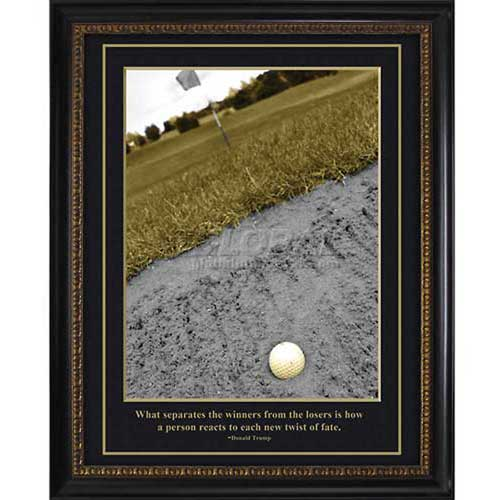 """Crystal Art Gallery TRUMP Golf Winners and Losers 20""""W x 24""""H, Straight Fit Framed by"""