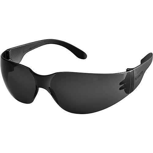 Global Industrial Safety Glasses, Scratch-Resistant, Smoke Lens Color, 1 Each...
