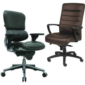 Raynor/Eurotech - Leather Upholstered Chairs