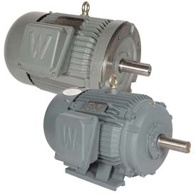Worldwide Electric General Purpose T-Frame Motors, Three Phase, TEFC, 208-230/460V